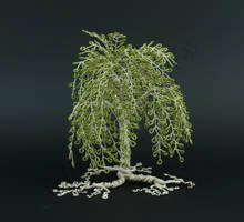 Weeping style birch green bead tree by Twystedroots