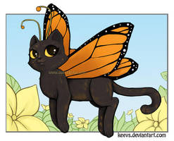 Kittyfly by keevs