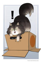 Snake in a Box by keevs