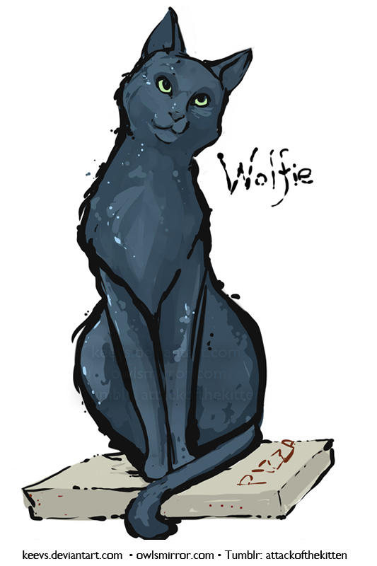 Wolfie by keevs