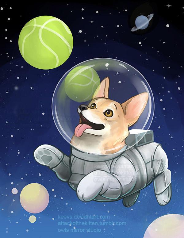 Corgi in Space by keevs