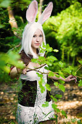FFXII - Through the woods by burloire