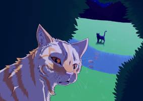 WARRIOR CATS: My little Secret by DarkmoonX-1Yb