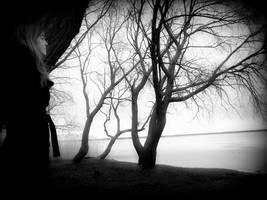the dream by SaintSnape