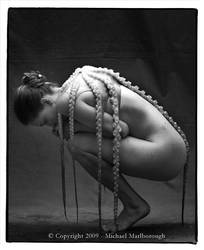 Octavius by Stephanie-Anne