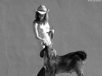 goat wrangling by Stephanie-Anne