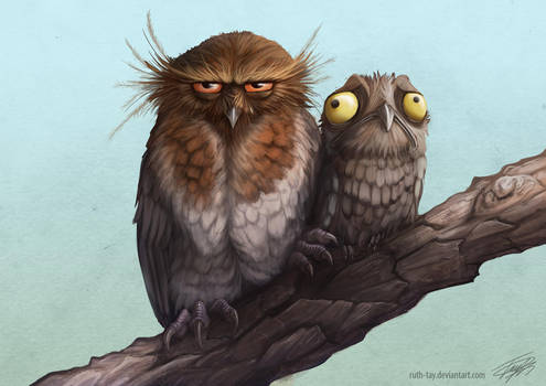Potoo Camouflage by Ruth-Tay