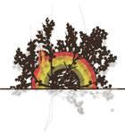 Sansui Colour by VIAESTA