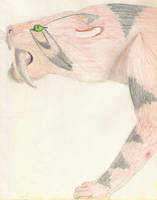 Sabertooth Tiger by KaraCrane