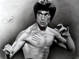 Drawing Bruce Lee by serkanpainter