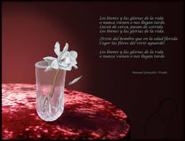Los Bienes Y Las Glorias by sequentialscott