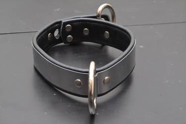 Padded metal collar front locked by Plasma-dragon