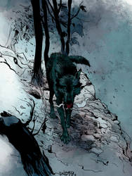 Paul Pope Wolf by SpicerColor
