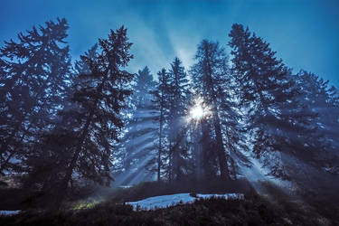 Rays by MarvinDiehl
