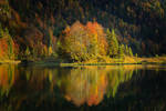 Autumn in Bavaria by MarvinDiehl