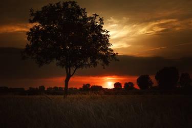 Dawn by MarvinDiehl
