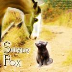 HEE Avatar-Silver Fox Stable by LeoFastfield