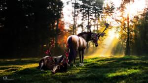 Forest's Spirits by LeoFastfield