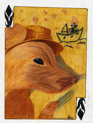 Wildcard by kabster
