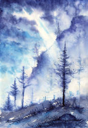 Winter Light by AnnaArmona