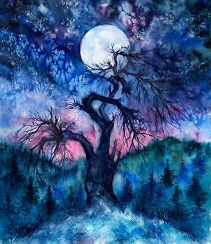 Into The Evernight by AnnaArmona