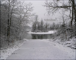Parker Landing in White by babygurl83