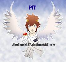 Commission 1 - Pit by AkuTenshi27
