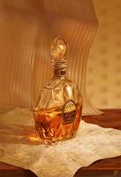 Cognac by inSOLense