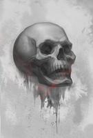 Skull by inSOLense