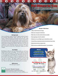 Petsitters to You 8.5x11 Flyer by RaceyGraphics