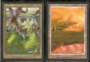 Forest and Plains Full Art by LucasCoppio