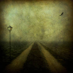 The Dividing Line by hearthy