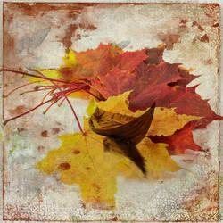 Autumn Marks by hearthy