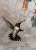 Hummingbird by MistiqueStudio
