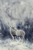 Winter Spirit by MistiqueStudio