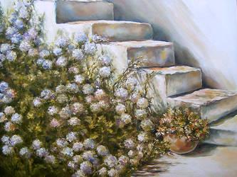 Stairs by radina