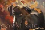 [COMM] Katy - Fall season by Ulfeid3