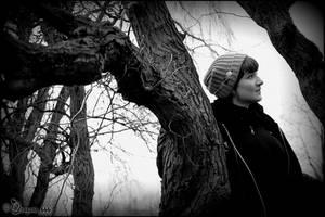 wintertime 4 by dragona666