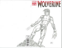 Wolverine 300 Sketch Cover by Ace-Continuado