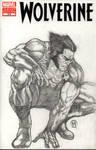 The Wolverine by Ace-Continuado