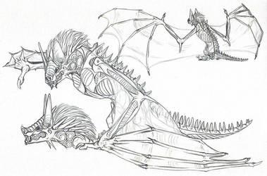 Bat Dragon by AFrozenHeart