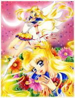 Sailor Moon Fan Art by Honey-san