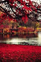 colour me blood red by NoirFeu