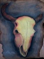Desert Skull by MrDannyD