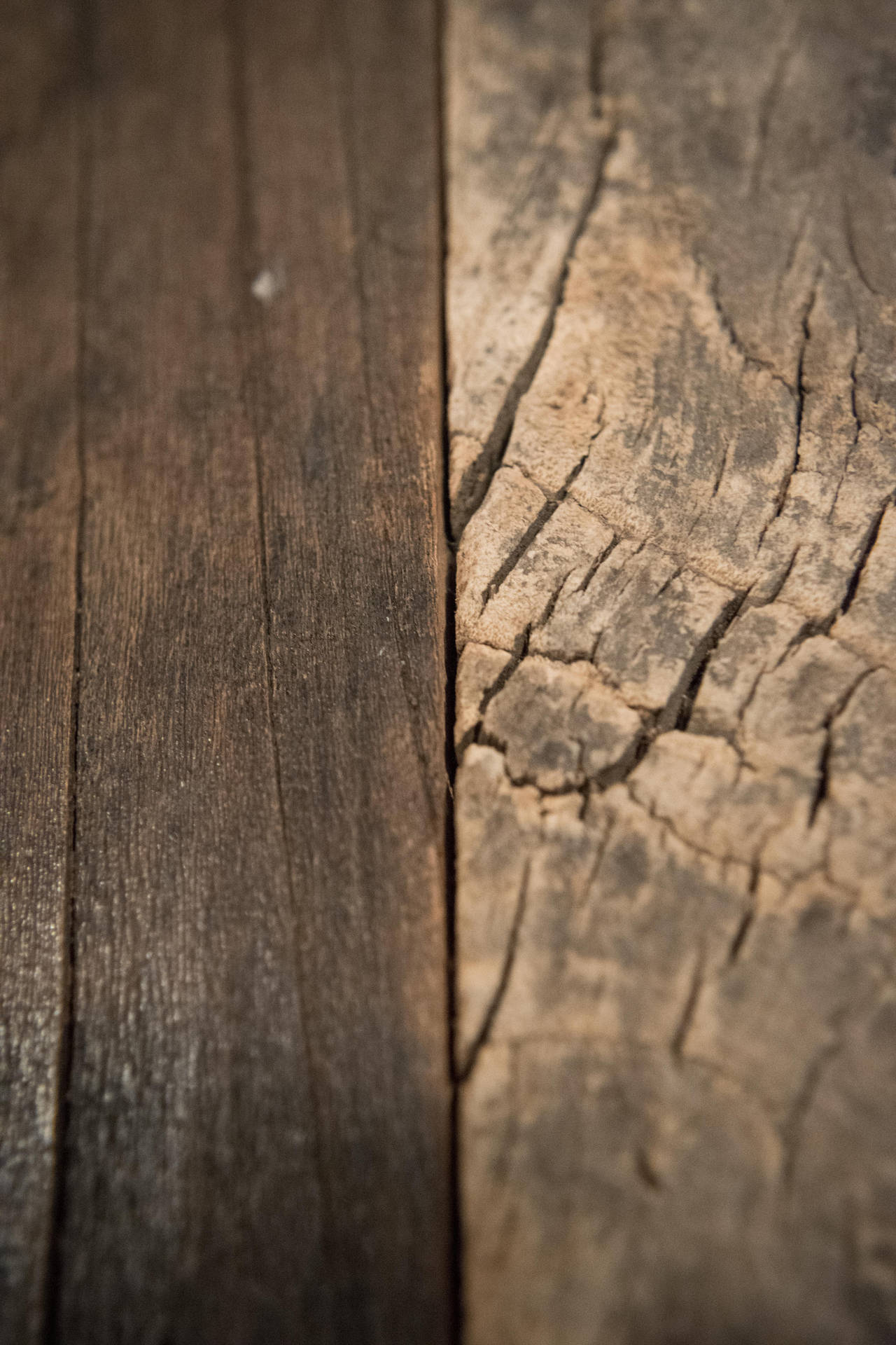 Wood Grain by MrDannyD