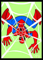 Web of Spiderman by Granamir30
