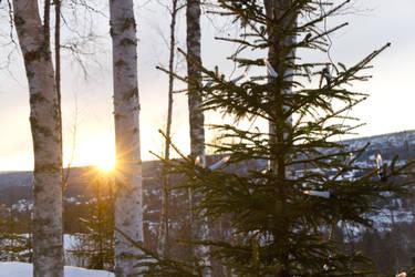 Norwegian winter sunset by robojot