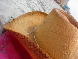 Beach Hat by IWishIHadWingZ