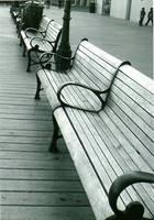 Care to Sit? by IWishIHadWingZ