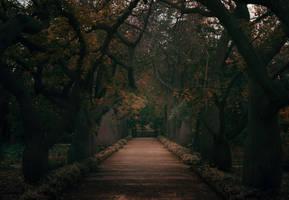 Sleepy Hollow by INVIV0